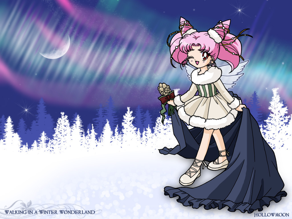AnimePaperwallpapers_Sailor-Moon_ho.jpg